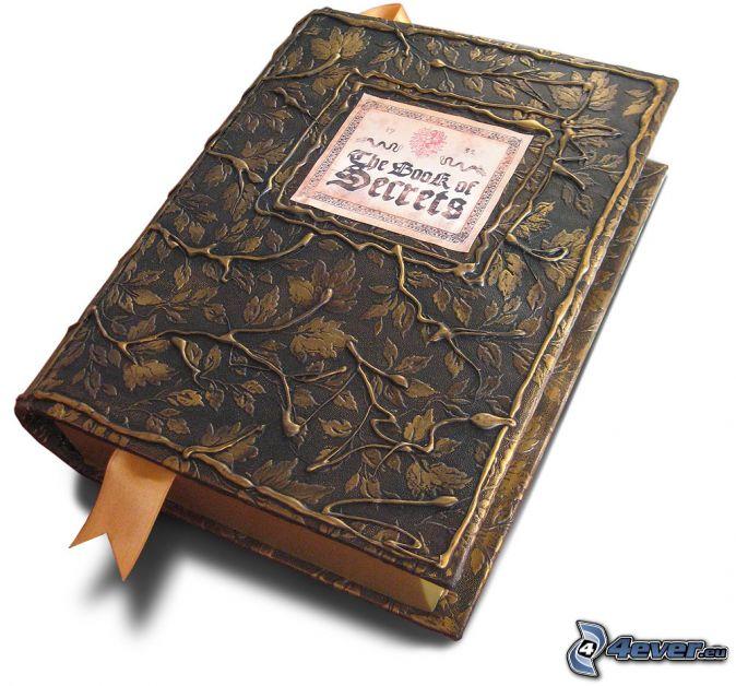 ebook the mind