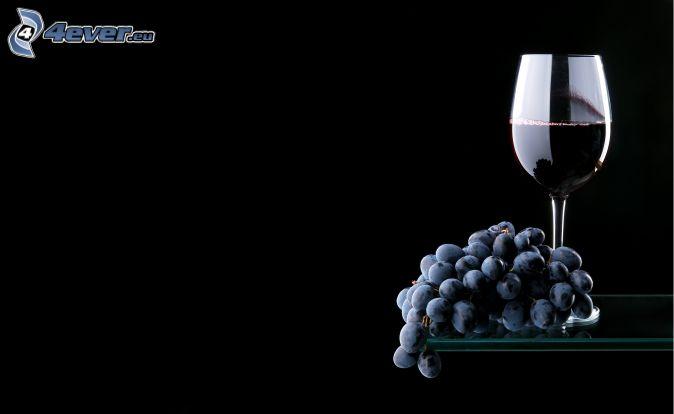 Schwuler Tag Essen und Wein