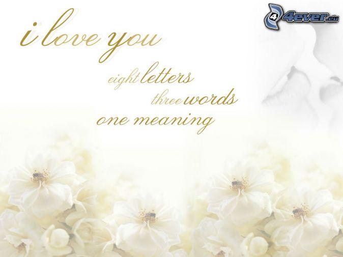 Ich Liebe Dich Bedeutung