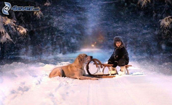 Kind, Hund, Schlitten, verschneite Landschaft