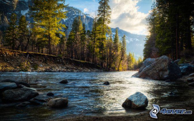 Fluss im yosemite nationalpark morgendämmerung wald steine