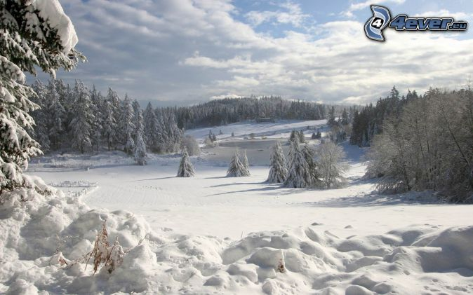 verschneite Landschaft, verschneiter Wald, verschneite Wiese, Wolken