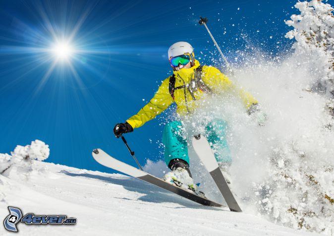 Skifahren, Skifahrer, Sonne, schneebedeckter Baum