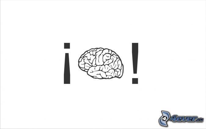 brain illustration typography wallpaper - photo #26