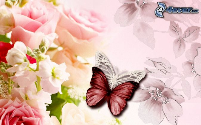 Schmetterlingen, Blumen