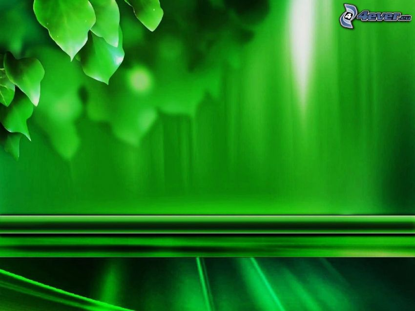 grüne Blätter, grüner Hintergrund