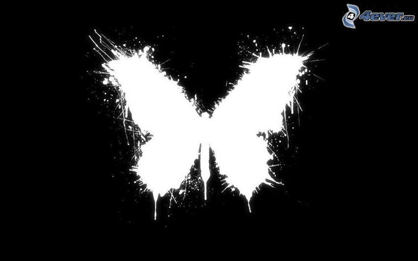 Schmetterling, Fleck, schwarzweiß