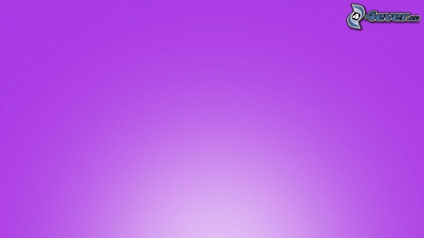violett Hintergrund
