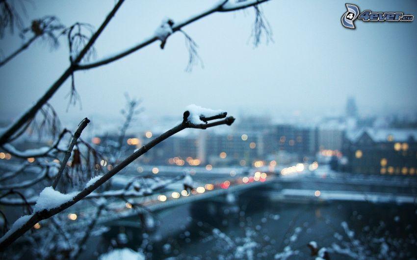 Ast, City, Schnee