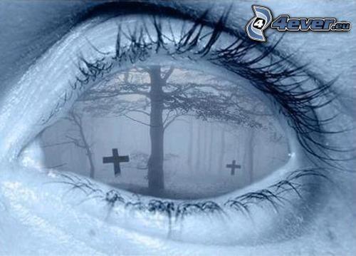Auge, Friedhof