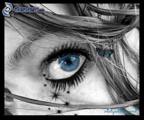 Auge, Haare, Augenbraue