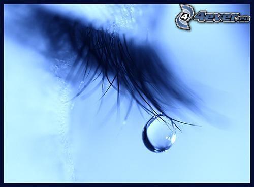 Auge, Träne, Wimpern
