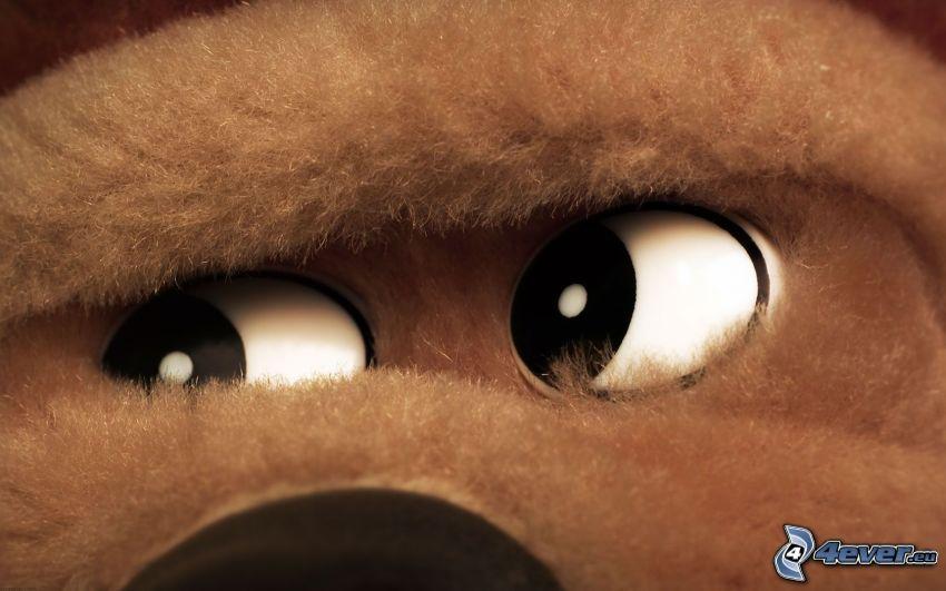 Augen, Kuscheltier