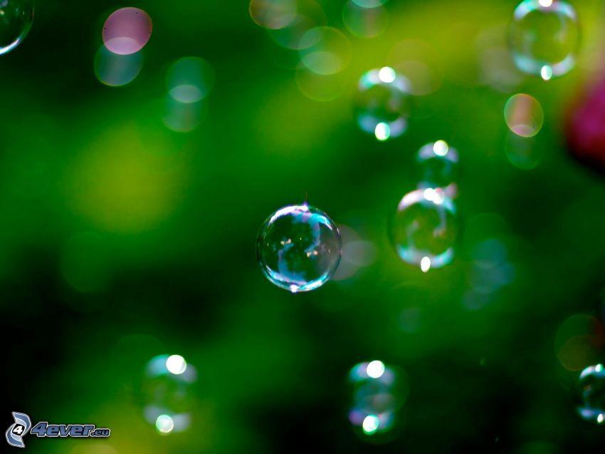 Blasen, grüner Hintergrund