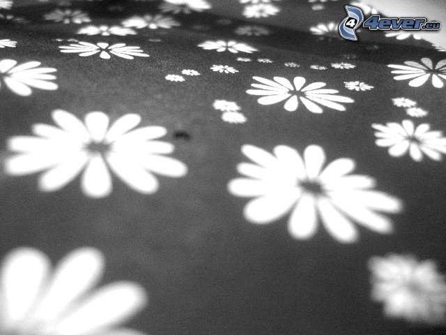 Blumen, Weiß, Stoff