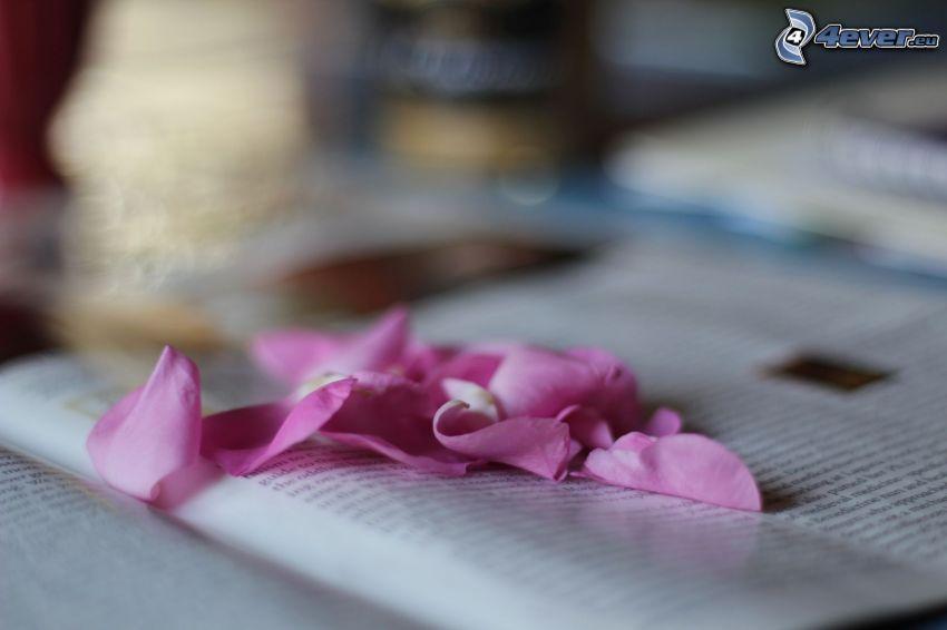 Blütenblätter, Buch