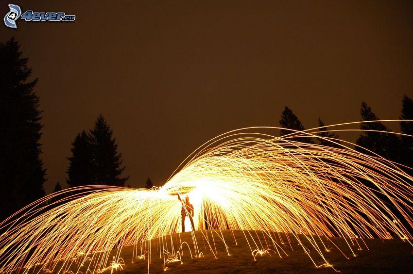 Feuerwerk, Bäum Silhouetten
