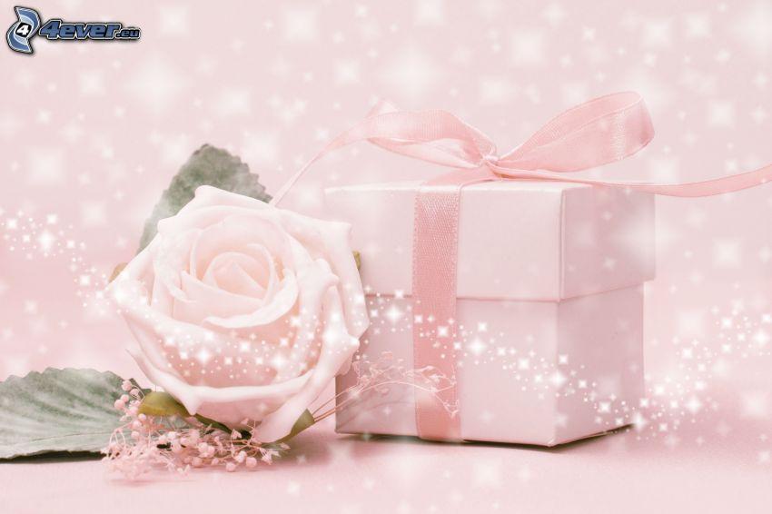 Geschenk, rosa Rose