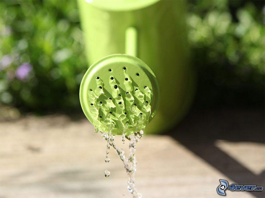 Gießkanne, Wasser