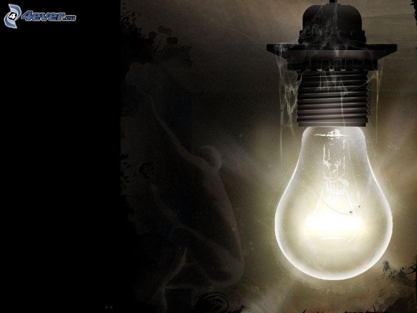Glühlampe, Licht, Spinnennetz, Gespenst