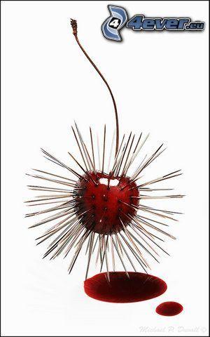 Kirsche, Nadeln, Blut