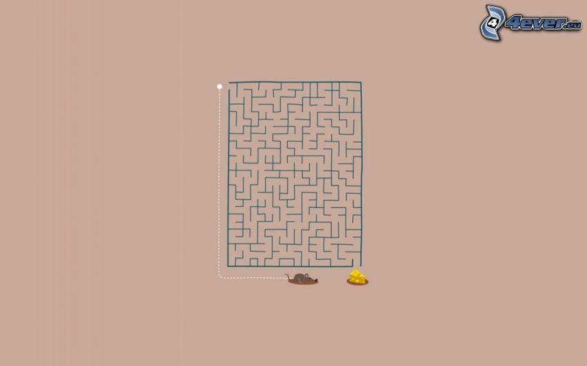 Labyrinth, Maus, Käse
