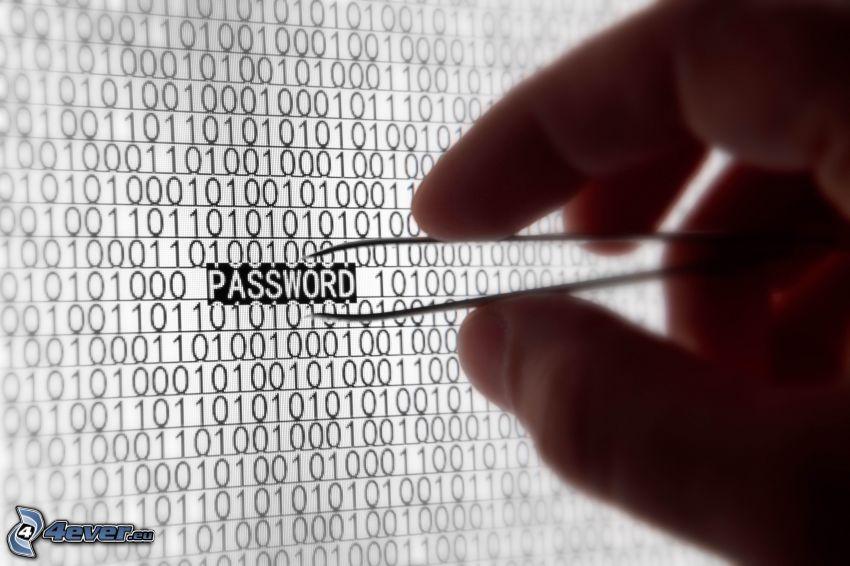 password, Passwort, Binärcode, Hand, Pinzette