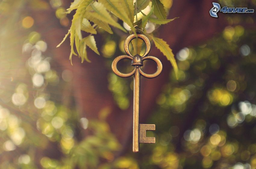 Schlüssel, Blätter