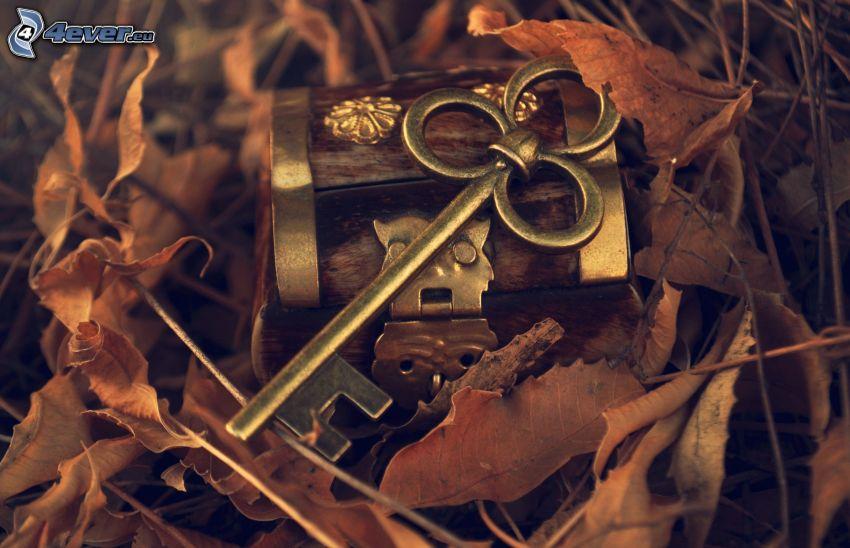 Schlüssel, Sparbüchse, trockene Blätter