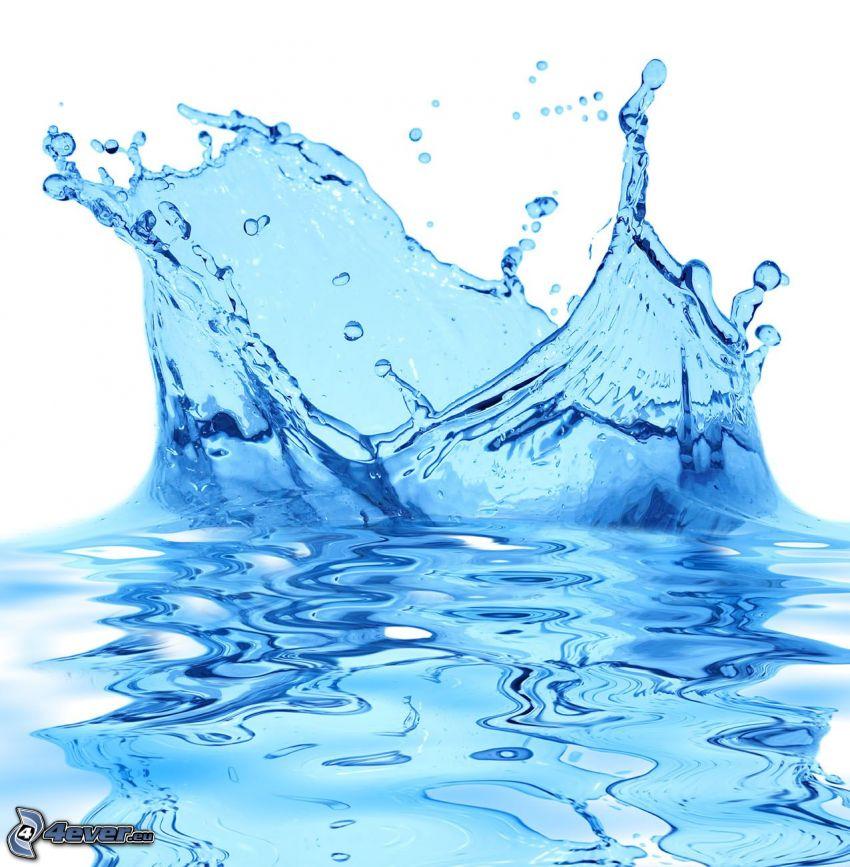 splash, Wasser