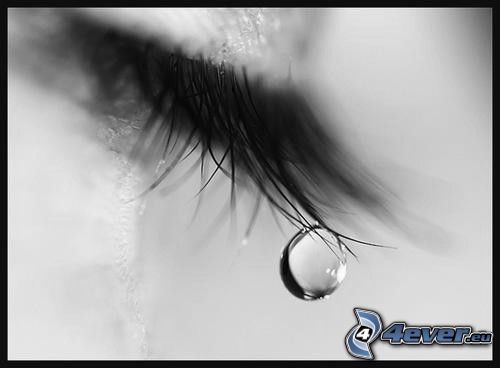 Träne auf Wimpern, Auge