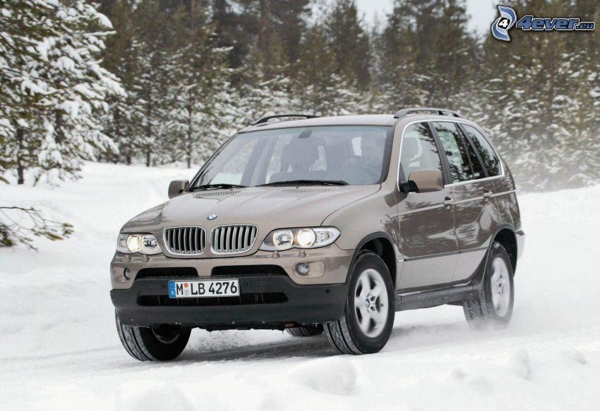 BMW X5, Schnee