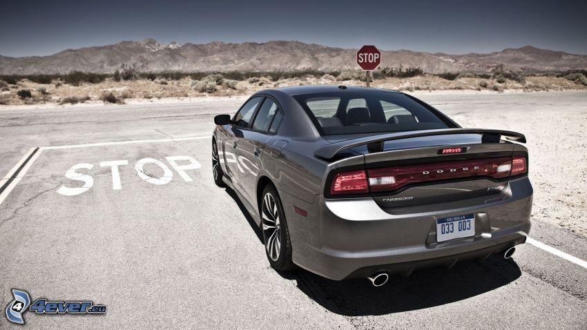 Dodge Charger, stop, Straße
