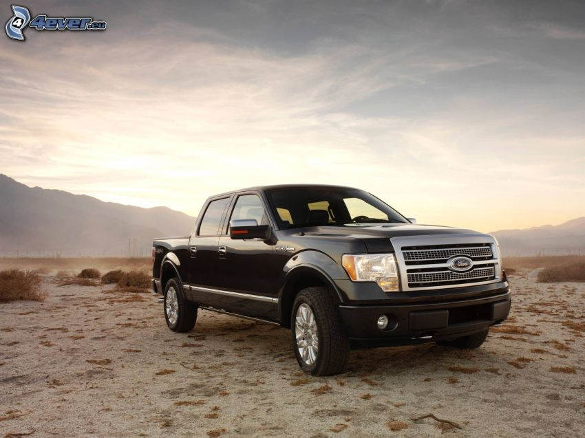 Ford F150 raptor, pickup truck, Wüste