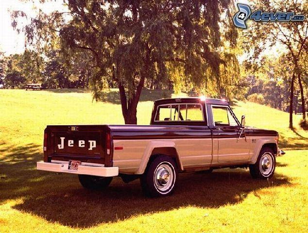 Jeep, pickup truck