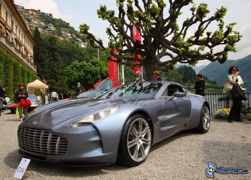 Aston Martin One 77, Baum, Menschen