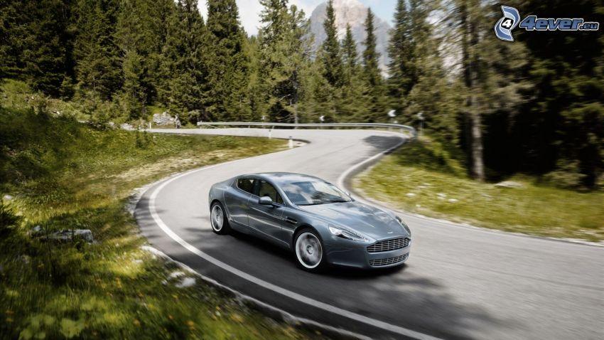 Aston Martin Rapide, Pfad durch den Wald, Serpentinen