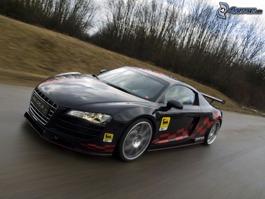 Audi R8 GT3, Bäume