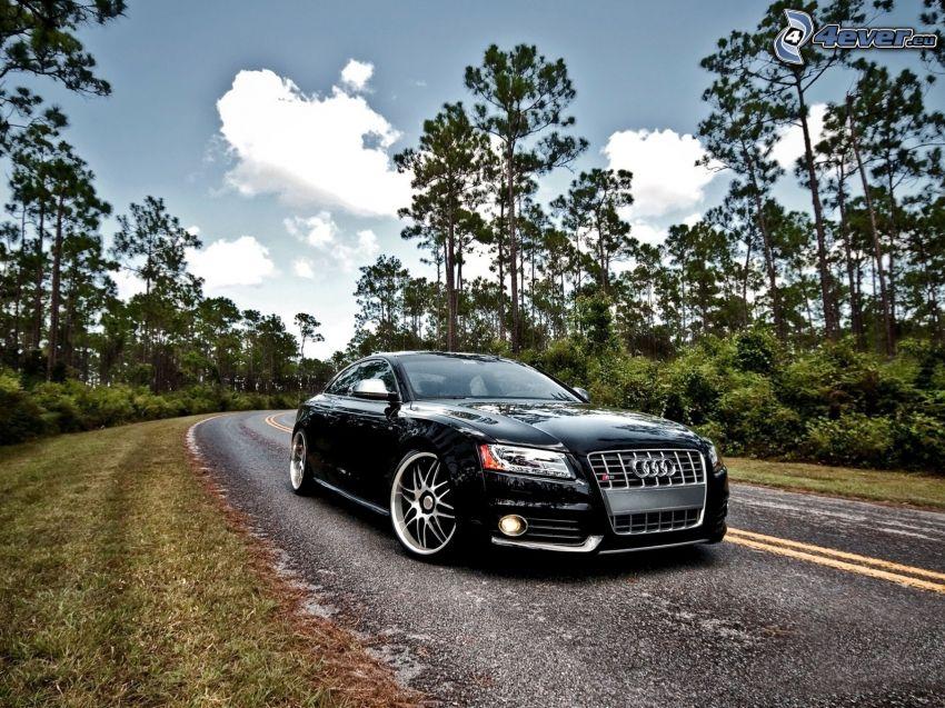 Audi S5, Pfad durch den Wald