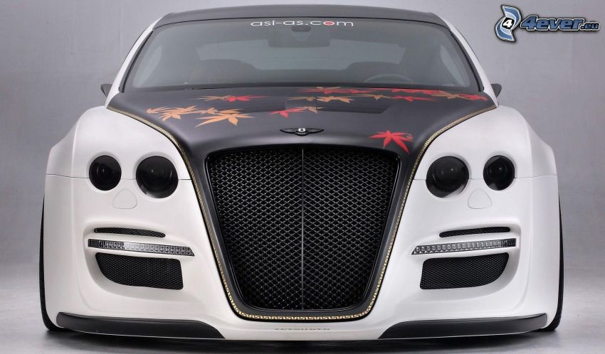 Bentley Continental GT, Vorderteil
