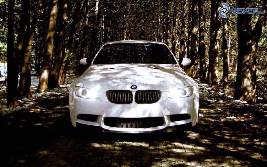 BMW, Baumallee