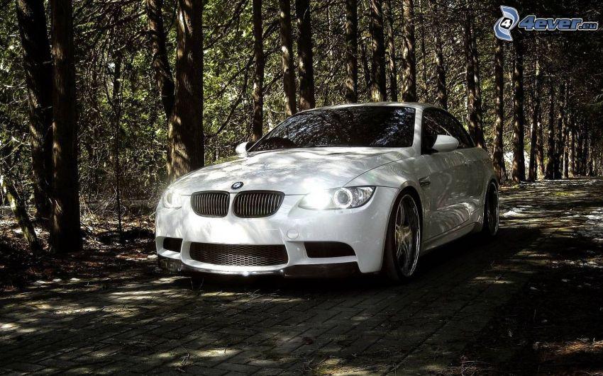 BMW, Lichter, Pfad durch den Wald
