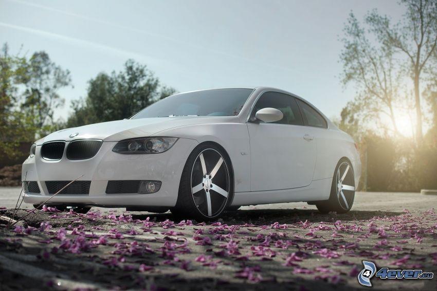 BMW 3, Blütenblätter