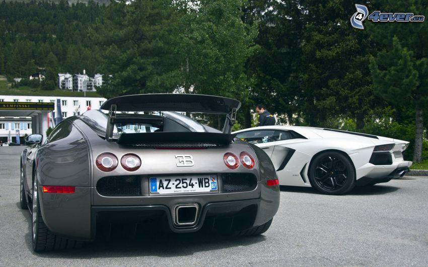 Bugatti Veyron, Lamborghini Aventador
