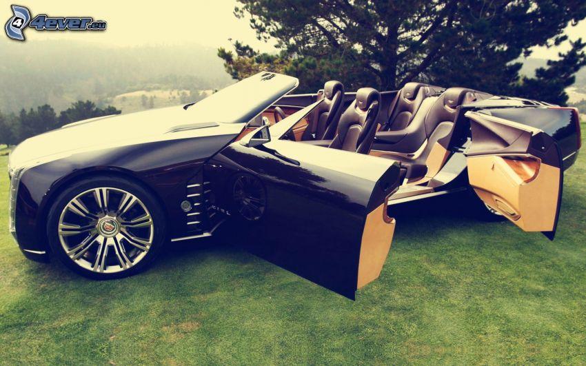 Cadillac Ciel, Cabrio, Tür, Konzept