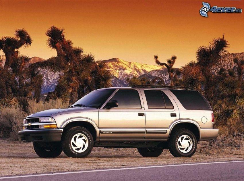 Chevrolet, SUV, Bäume