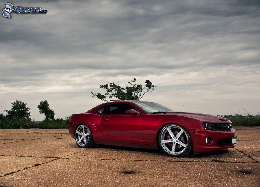 Chevrolet Camaro, Himmel