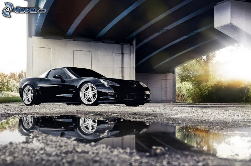 Chevrolet Corvette, unter der Brücke, Pfütze, Spiegelung