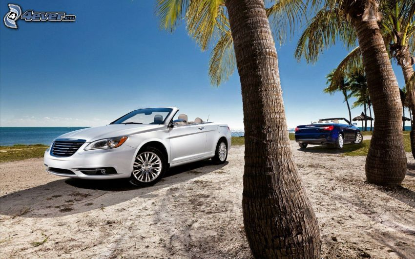 Chrysler 200 Convertible, Cabrio, Palmen