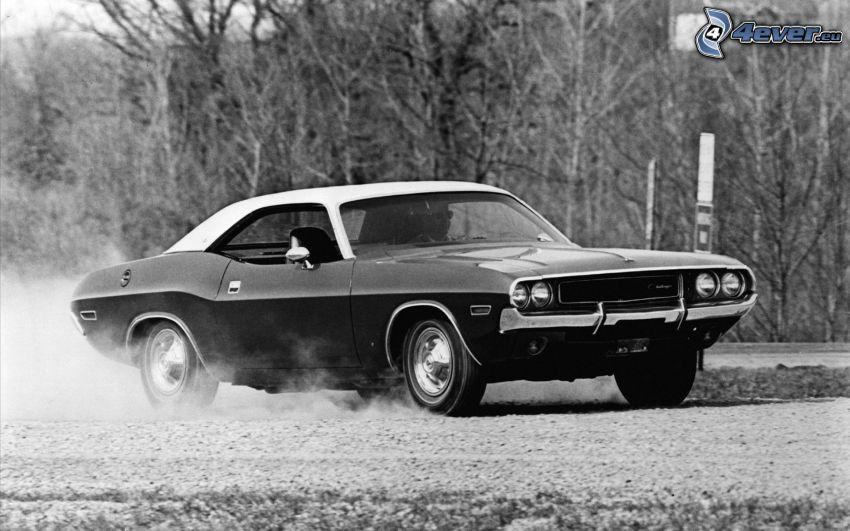 Dodge Challenger, Oldtimer, Schwarzweiß Foto
